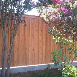 Concrete curb work for cedar fence