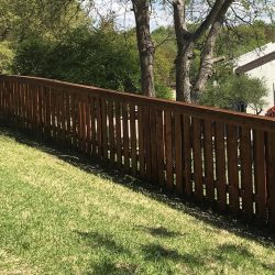 Stained Wooden Fence in Backyard
